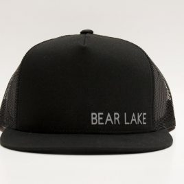 Bear Lake Gray